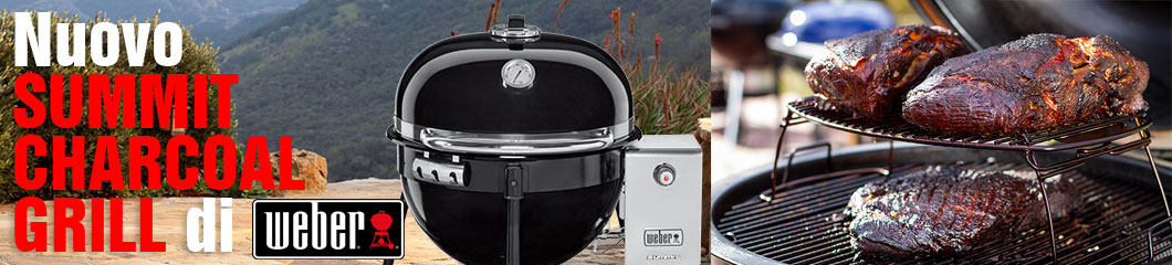 centro-verde-toppi-2016-barbecue-weber-summit-charcoal-grill