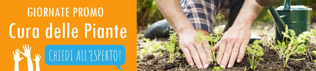 Centro-Verde-Toppi-18-cura-delle-piante