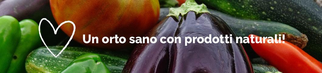 Centro-Verde-Toppi-2018-ortomio-consigli-blog