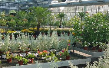 serre-garden-toppi-saronno