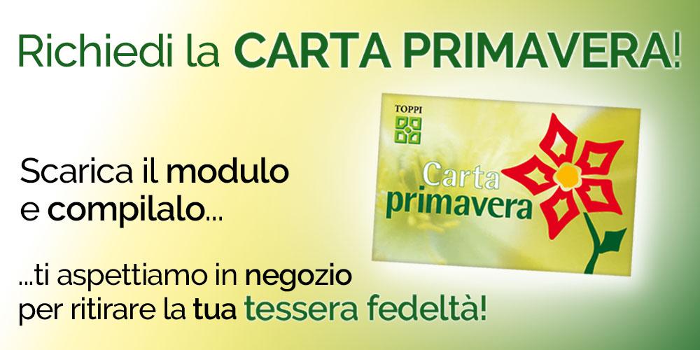 2019-05-31-Toppi-Carta-Primavera-Sito