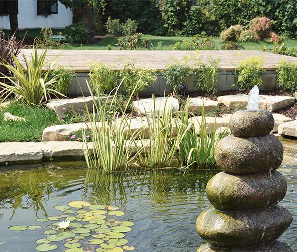 2020-05-05- Immagine 002-Pagina Progettazione giardino-Toppi