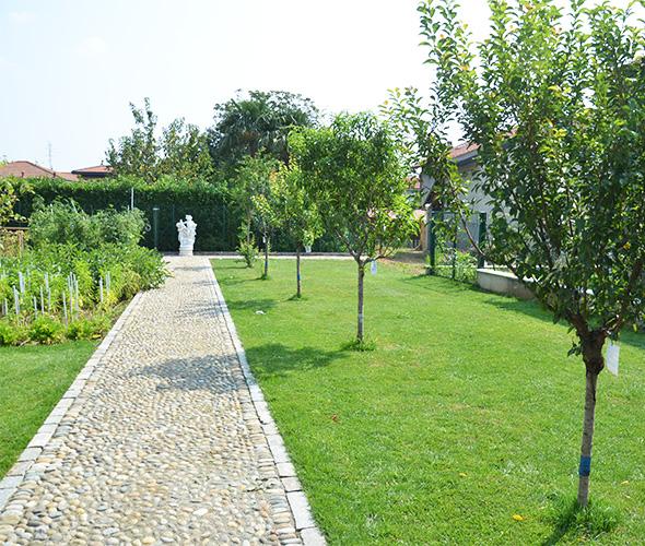 2020-05-05- Immagine 007-Pagina Progettazione giardino-Toppi