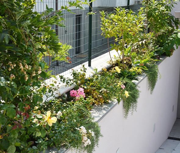 2020-05-05- Immagine 009-Pagina Progettazione giardino-Toppi